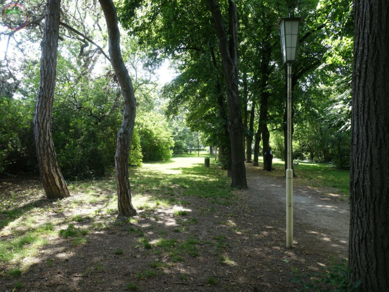 Bild Weg 5 Weg in Laterne in Park zwischen Bäumen