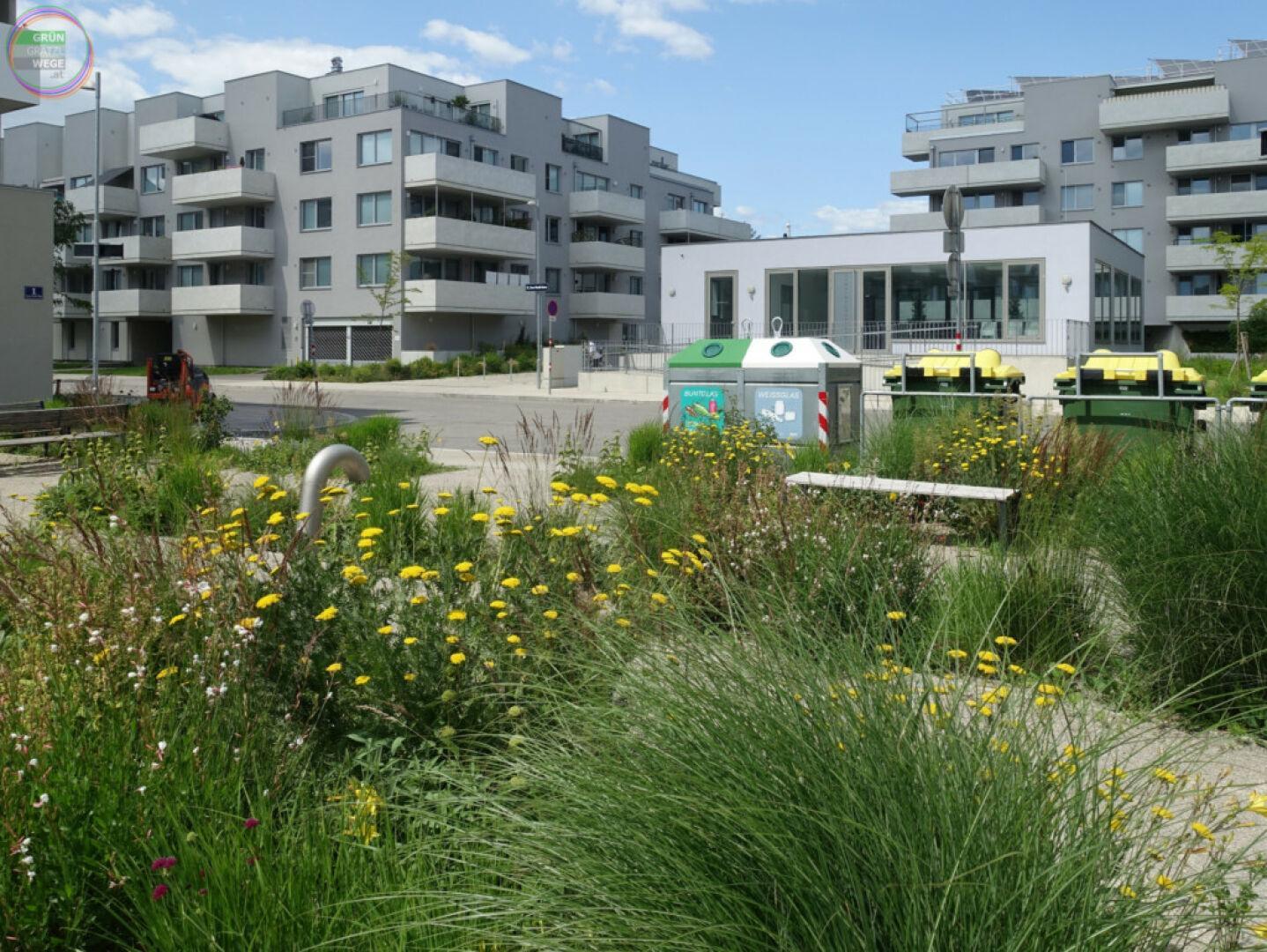 Bild Weg 5 Wilde Grünflächen in Neubauviertel
