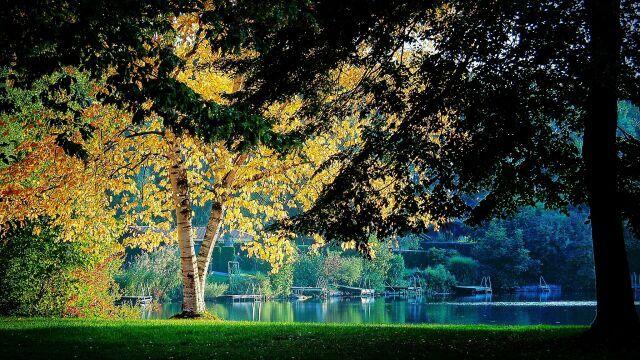 Autumn silence   #autumn #herbst #herbstfarben #photography  #landscape #photos #landschaftsfotografie